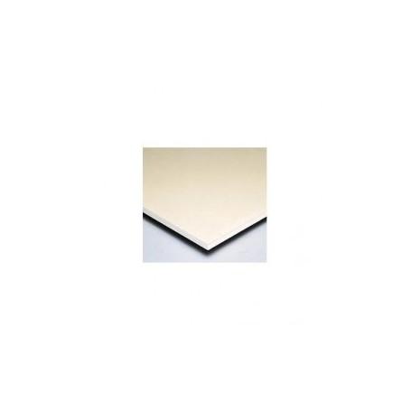 Plaque de plàtre blanc ST 13mm/60X260