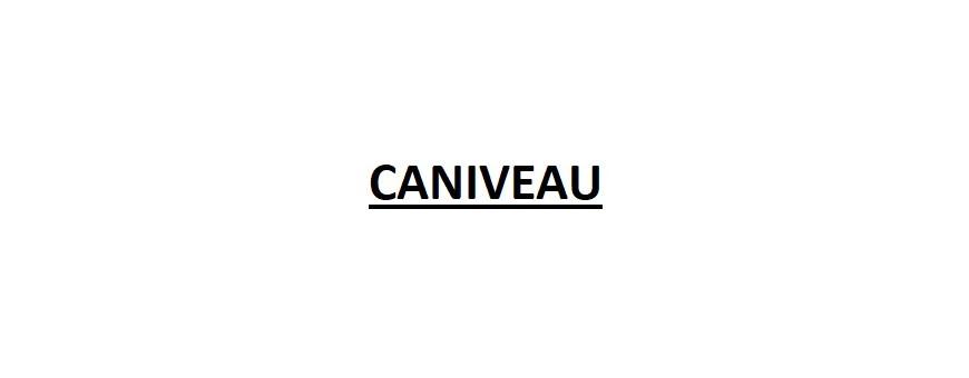 CANIVEAU