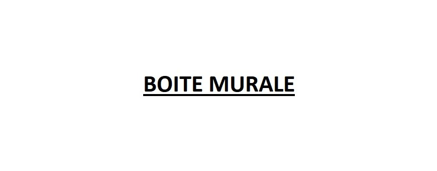 BOITE MURALE